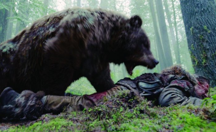 A Bear? Fight!